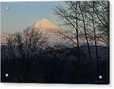 Mclaughlin Late Winter Day Acrylic Print by Mick Anderson