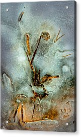 Meade Ice Abstract Acrylic Print by Tom Cameron