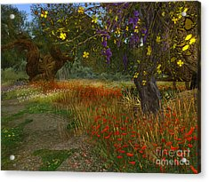 Meadow And Trees Acrylic Print