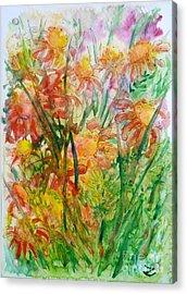 Meadow Flowers Acrylic Print by Zaira Dzhaubaeva
