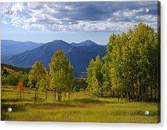 Meadow Highlights Acrylic Print