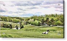 Meadow II Acrylic Print by Chuck Kuhn