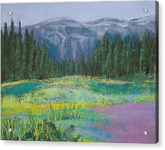 Meadow In The Cascades Acrylic Print