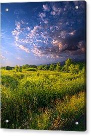 Meadow Acrylic Print by Phil Koch