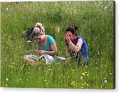 Meadow Plant Identification Acrylic Print