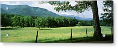 Meadow Surrounded By Barbed Wire Fence Acrylic Print by Panoramic Images