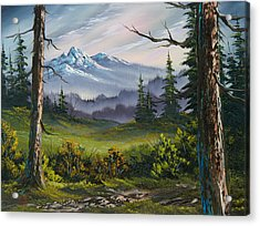 Meadow View Acrylic Print by C Steele