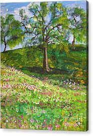 Meadowland    Painting Acrylic Print by Judy Via-Wolff
