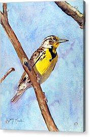 Meadowlark Sunrise Acrylic Print