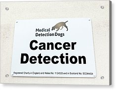 Medical Detection Dogs Sign Acrylic Print by Louise Murray