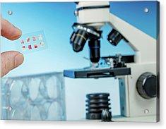 Medical Samples On Microscope Slide Acrylic Print by Wladimir Bulgar