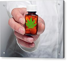 Medicinal Marijuana Acrylic Print by Victor De Schwanberg