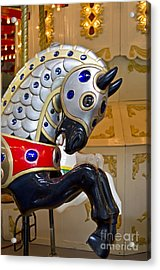 Acrylic Print featuring the photograph Medieval Stallion by Maria Janicki