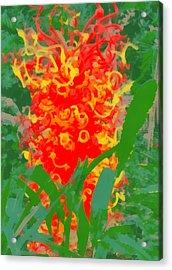 Medusa  Acrylic Print by Dan Sproul