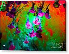 Medusas On Fire 5d24939 P128 Acrylic Print by Wingsdomain Art and Photography