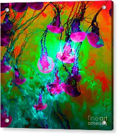 Medusas On Fire 5d24939 Square P128 Acrylic Print by Wingsdomain Art and Photography