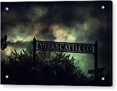 Meeks Cattle Acrylic Print by Emily Stauring