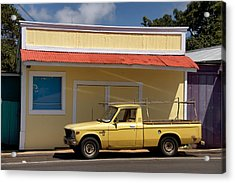 Acrylic Print featuring the photograph Mellow Yellow by Trever Miller