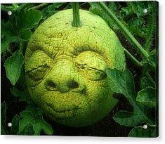 Melon Head Acrylic Print by Jack Zulli