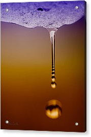 Melt Three Acrylic Print by Bob Orsillo