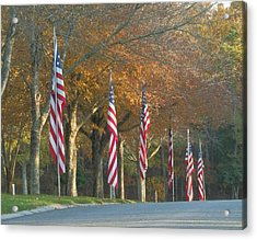 Memorial Drive Acrylic Print by Heather Sylvia