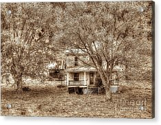 Memories Behind The Trees Acrylic Print by Dan Friend