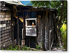 Acrylic Print featuring the photograph Memories In Amber by Sandi Mikuse