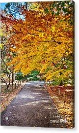 Memories Of Autumn-2 Acrylic Print by Tad Kanazaki