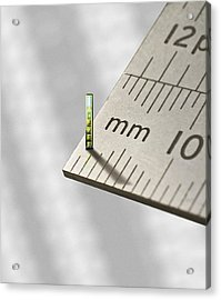 Mems Chip, Artwork Acrylic Print by Science Photo Library