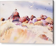 Acrylic Print featuring the painting Mendocino Birds by John  Svenson