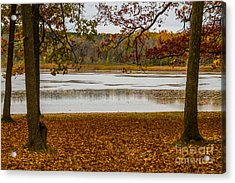 Mendon Ponds Acrylic Print by William Norton