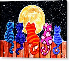 Meowing At Midnight Acrylic Print