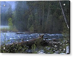 Acrylic Print featuring the photograph Merced River by Duncan Selby