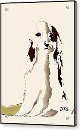 Mercedes  - Our Cavalier King Charles Spaniel  No. 9 Acrylic Print