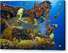 Mermaid Oblivion Acrylic Print by Paula Porterfield-Izzo