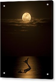 Mermaid's Moonsong Acrylic Print by Paula Porterfield-Izzo