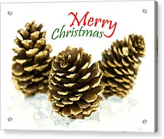 Merry Christmas Acrylic Print by Blink Images