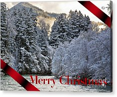 Merry Christmas Card Acrylic Print by Belinda Greb