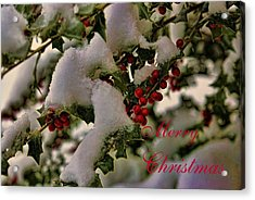Merry Christmas Card Holly Acrylic Print