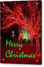 Acrylic Print featuring the photograph Merry Christmas by Darren Robinson