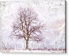 Merry Christmas Acrylic Print by Jenny Rainbow