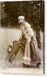 Merry Christmas Acrylic Print by Martine Roch