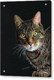 Mesmer Eyes Acrylic Print by Sarah Batalka