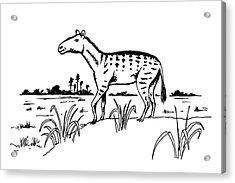 Mesohippus Prehistoric Horse Acrylic Print