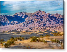 Mesquite Dunes And Mountains Acrylic Print