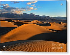 Mesquite Sand Dunes Death Valley Acrylic Print by Peter Dang
