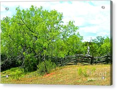 Mesquite Tree And Cedar Post Fence Acrylic Print by Linda Cox
