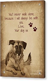 Message From Your Dog Acrylic Print by Clare Bevan