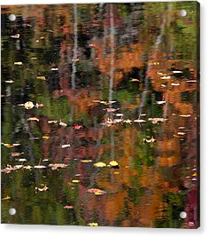 Messalonskee Reflection 1 Acrylic Print