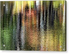 Messalonskee Reflection 2 Acrylic Print
